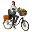 Bicicletta elettrica SUV