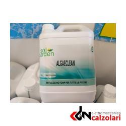 Antialghe liquido 5lt Fluidra