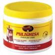 Pulighisa
